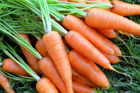 Beauty Benefits of Carrot…