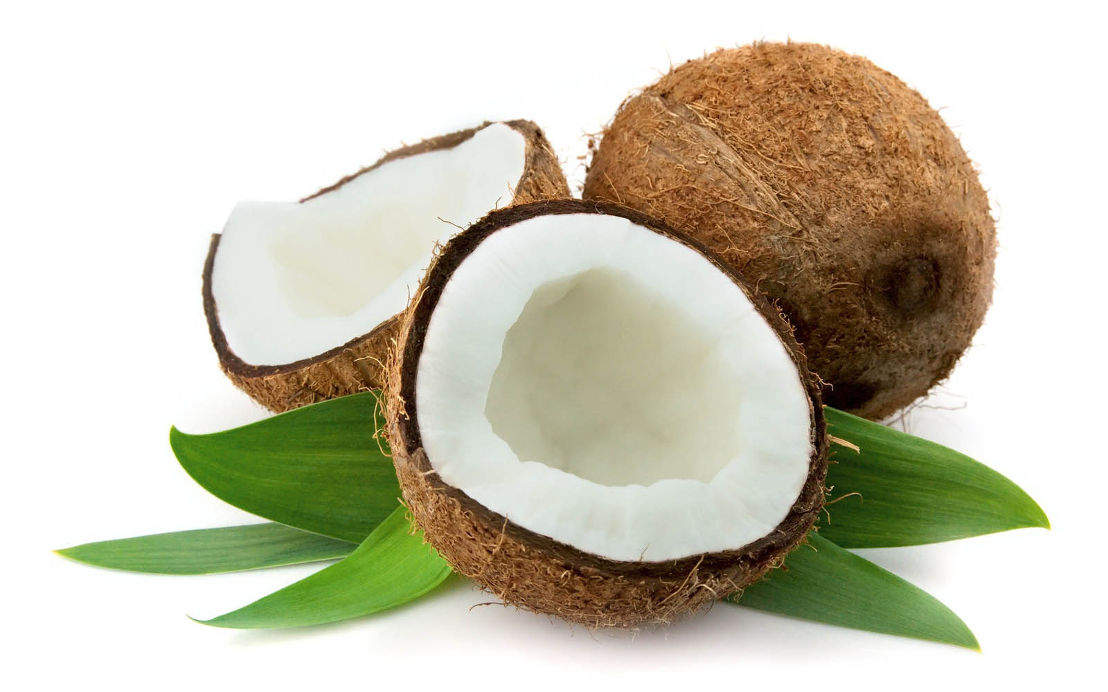 62927573-coconut-wallpapers