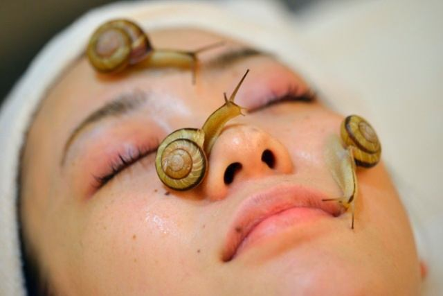 beauty_benefits_of_snail_slime_