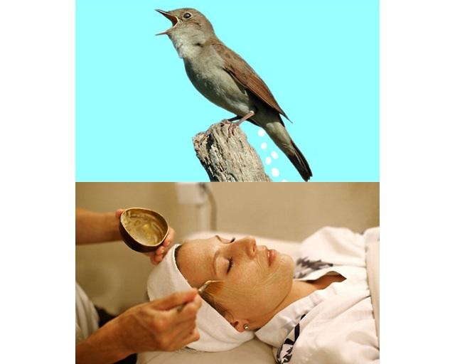 bird-poop-facial