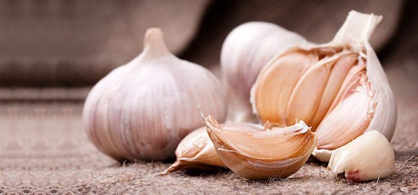 can-garlic-help-hair-growth-1024x478
