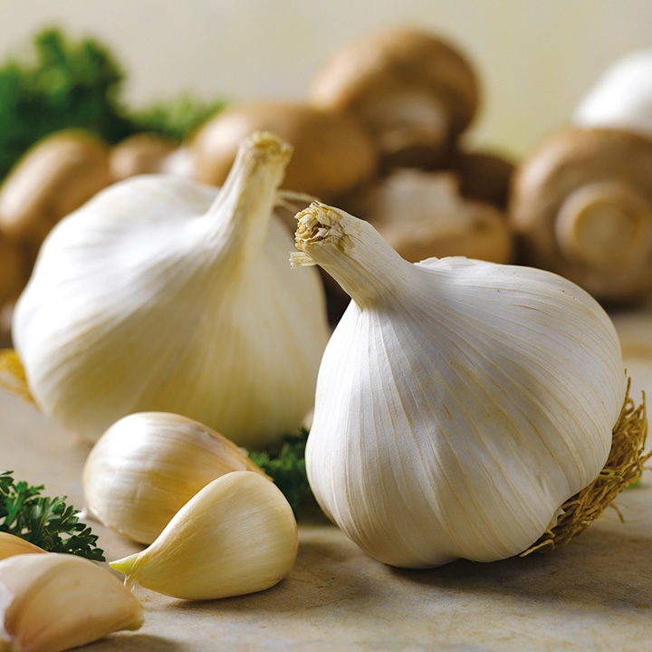 Dozen Reasons to Include Garlic In Your Daily Regimen