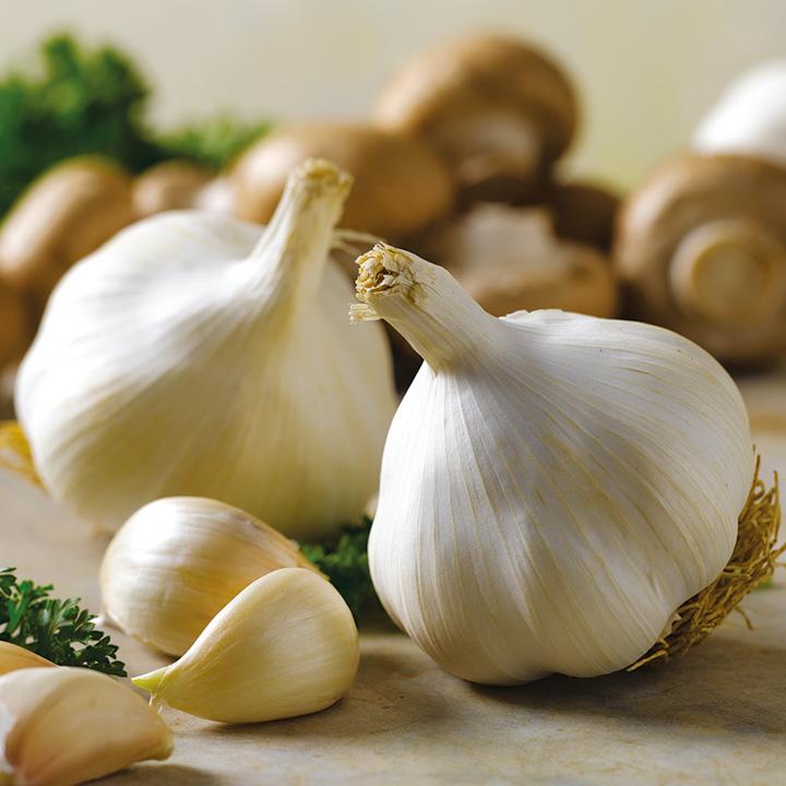 Dozen Reasons to Include Garlic In Your DailyRegimen