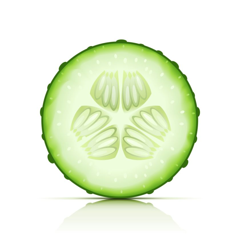 12437657_xl%20Cucumber%20Slice.jpg